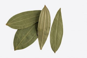 Indian Bay leaves
