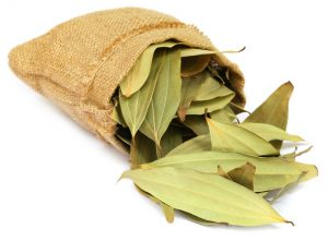 47866592 - cassia leaves in sack over white background