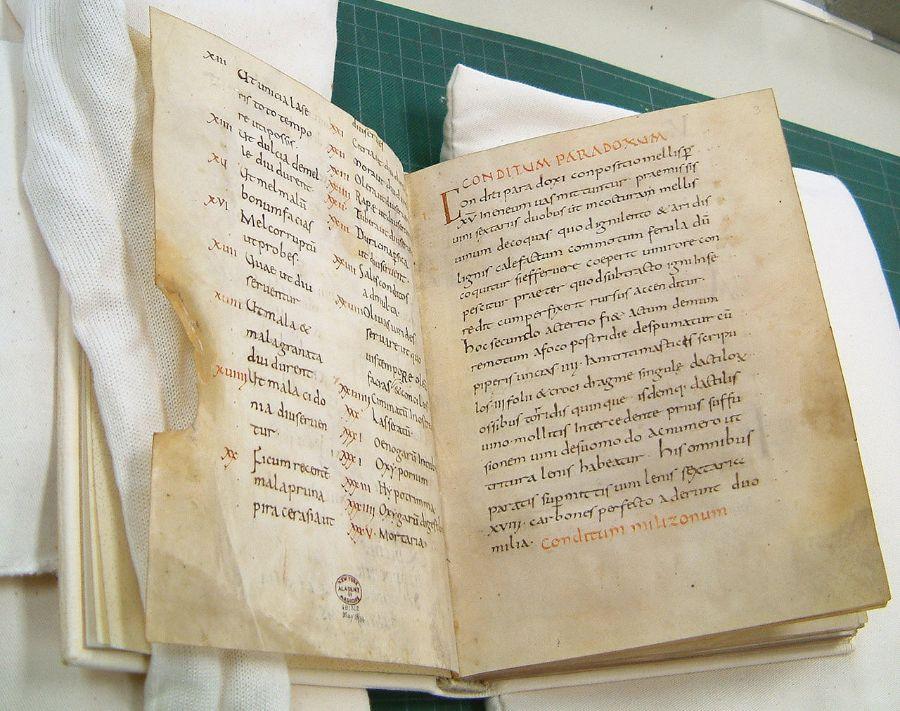 Apicius Cookbook